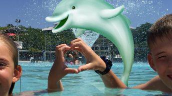 australie lagoon dauphin tin can bay