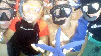 étoile de mer bleue ilot maitre nouvelle calédonie